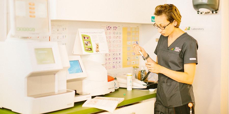 in-house laboratory & diagnostics